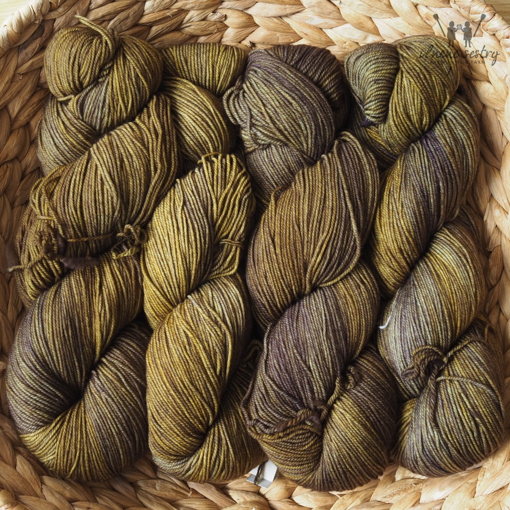 Malabrigo Sock 851 Turner